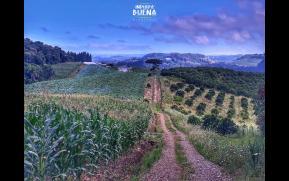 153-1-paisagens-rurais-original.jpg